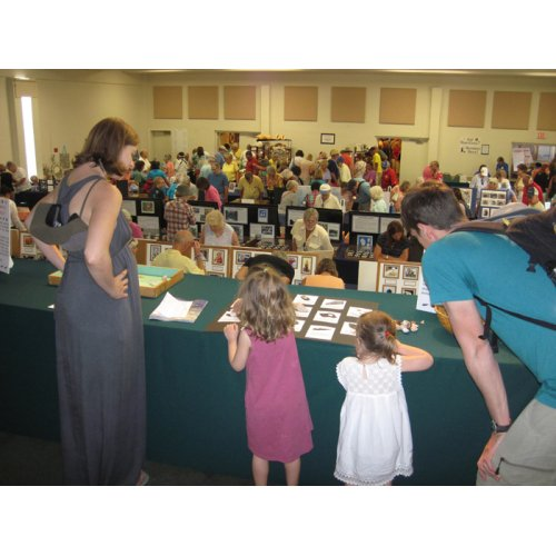 Sanibel Shell Show