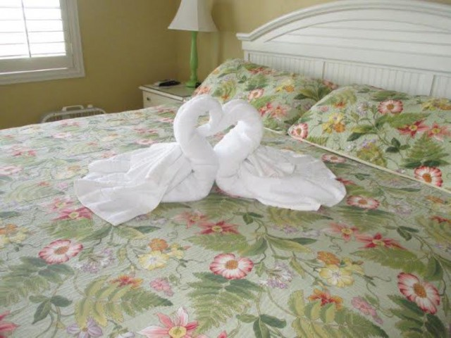 love swans out of towels