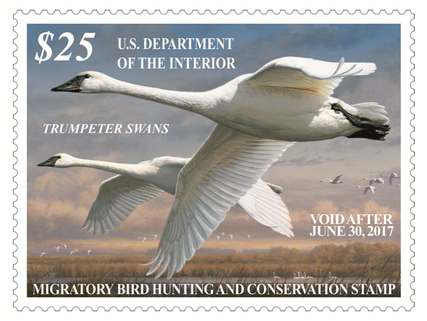2016-2017-federal-duck-stamp