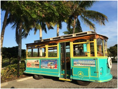 Adventures in Paradise trolly